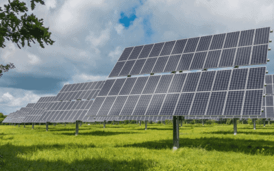 Your Guide to Ground Mounted Solar Farms