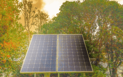 Do Trees Affect Your Home Solar System