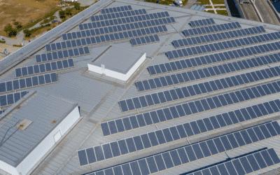 solar panel companies in florida, Blog